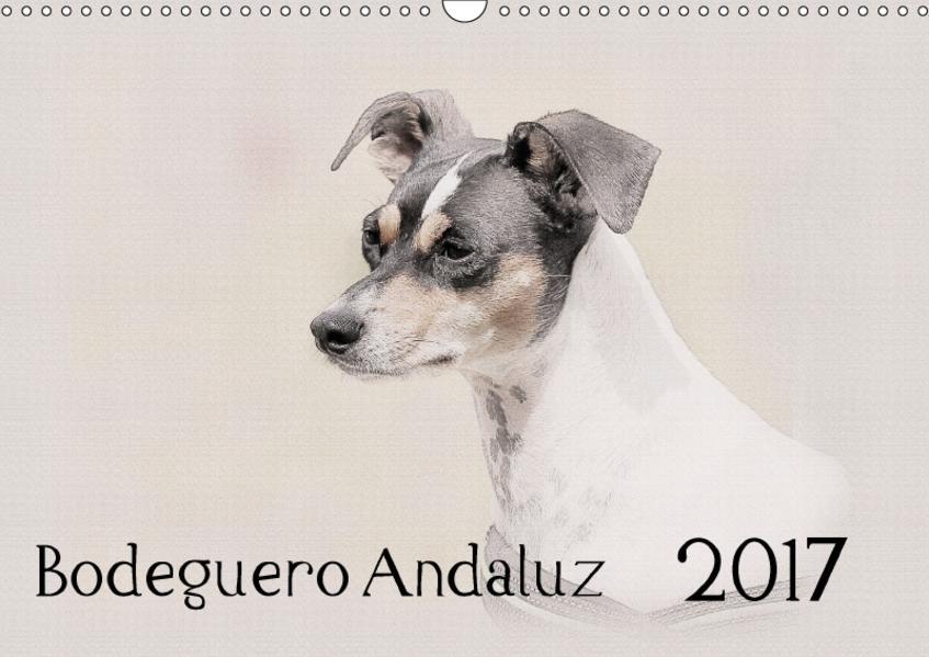 Bodeguero Andaluz 2017 (Wandkalender 2017 DIN A3 quer) - Coverbild