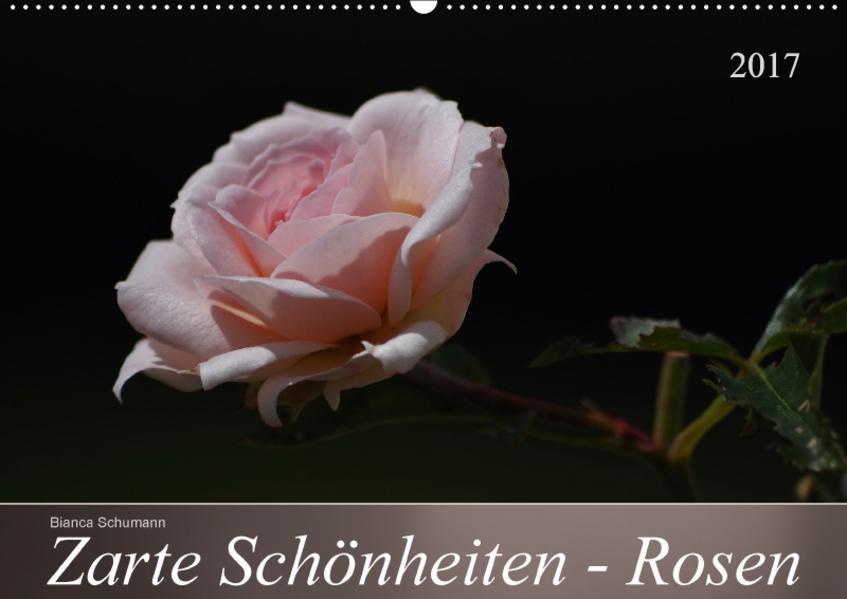 Zarte Schönheiten - Rosen (Wandkalender 2017 DIN A2 quer) - Coverbild