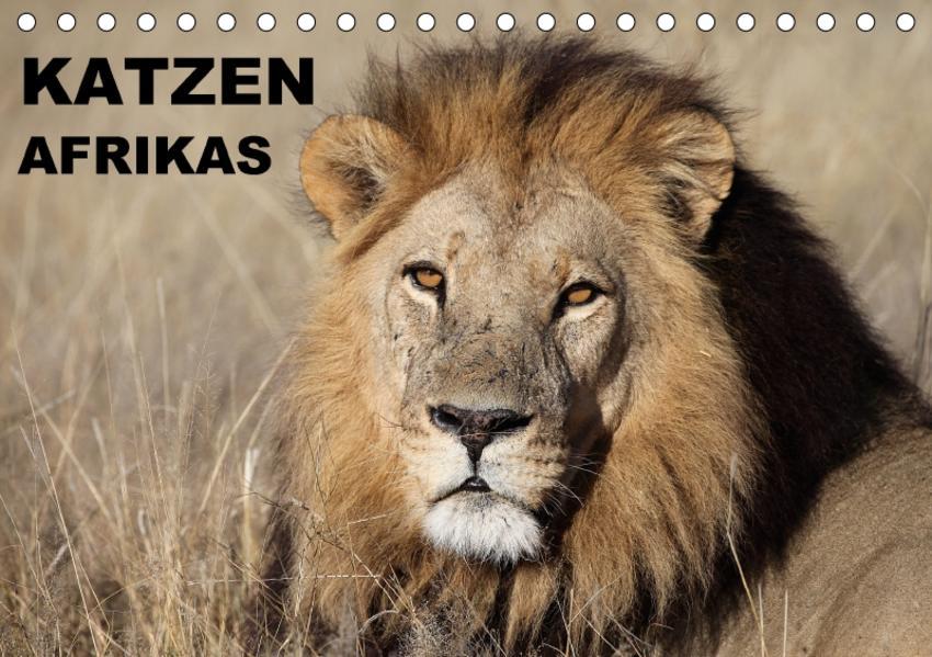 Katzen Afrikas (Tischkalender 2017 DIN A5 quer) - Coverbild