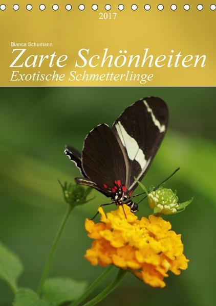 Zarte Schönheiten Exotische Schmetterlinge / PlanerCH-Version  (Tischkalender 2017 DIN A5 hoch) - Coverbild