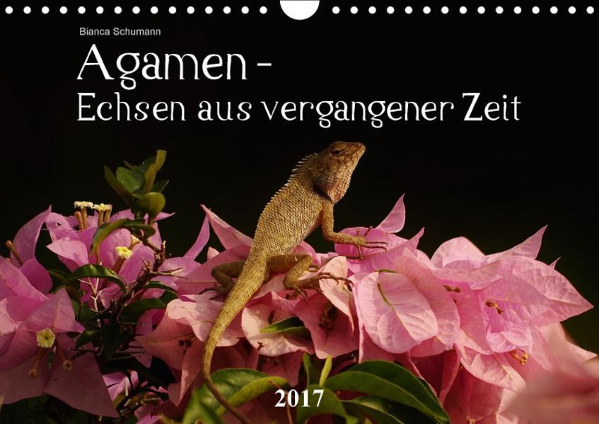 Agamen - Echsen aus vergangener ZeitAT-Version  (Wandkalender 2017 DIN A4 quer) - Coverbild
