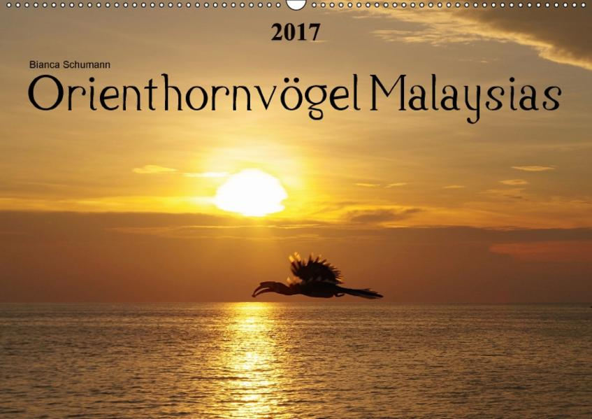 Orienthornvögel MalaysiasAT-Version  (Wandkalender 2017 DIN A2 quer) - Coverbild