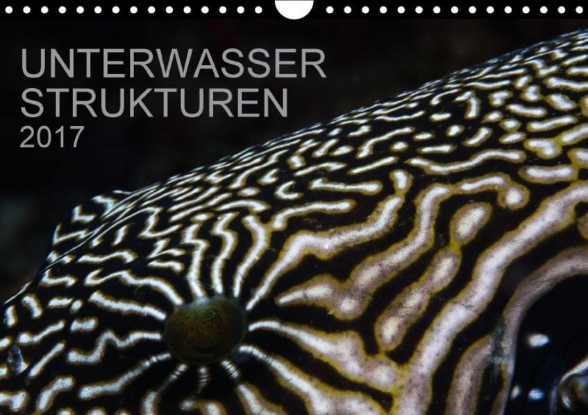 Unterwasser Strukuren (Wandkalender 2017 DIN A4 quer) - Coverbild