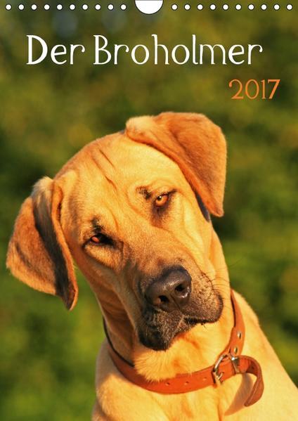 Der Broholmer (Wandkalender 2017 DIN A4 hoch) - Coverbild