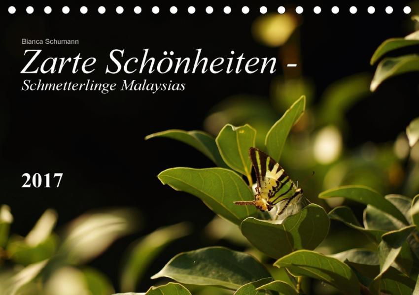 Zarte Schönheiten - Schmetterlinge MalaysiasCH-Version  (Tischkalender 2017 DIN A5 quer) - Coverbild