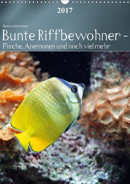 Bunte Riffbewohner - Fische, Anemonen und noch viel mehrCH-Version  (Wandkalender 2017 DIN A3 hoch) - Coverbild