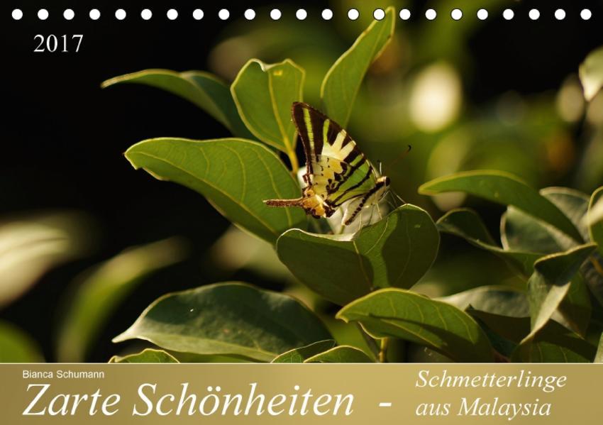 Zarte Schönheiten - Schmetterlinge aus MalaysiaAT-Version  (Tischkalender 2017 DIN A5 quer) - Coverbild