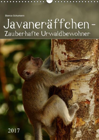 Javaneräffchen - Zauberhafte UrwaldbewohnerAT-Version  (Wandkalender 2017 DIN A3 hoch) - Coverbild