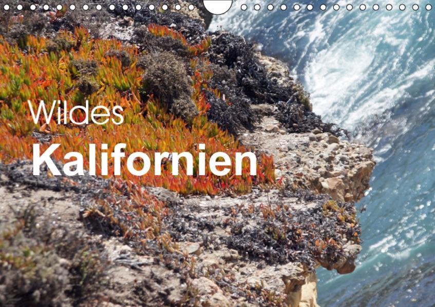 Wildes Kalifornien (Wandkalender 2017 DIN A4 quer) - Coverbild