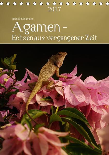 Agamen - Echsen aus vergangener ZeitAT-Version  (Tischkalender 2017 DIN A5 hoch) - Coverbild