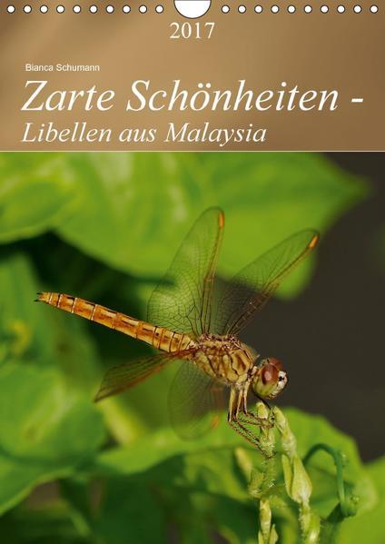 Zarte Schönheiten - Libellen aus MalaysiaAT-Version  (Wandkalender 2017 DIN A4 hoch) - Coverbild