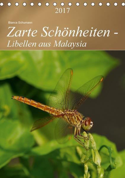 Zarte Schönheiten - Libellen aus MalaysiaAT-Version  (Tischkalender 2017 DIN A5 hoch) - Coverbild