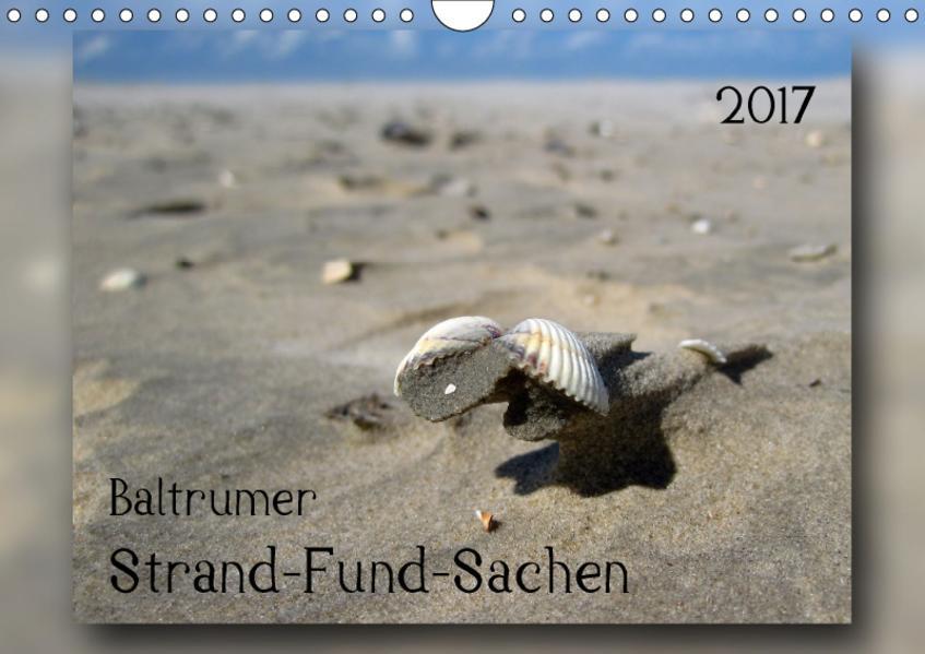 Baltrumer Strand-Fund-Sachen (Wandkalender 2017 DIN A4 quer) - Coverbild