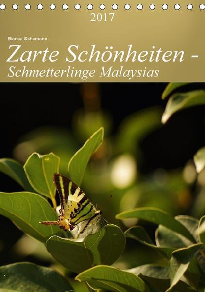 Zarte Schönheiten - Schmetterlinge MalaysiasCH-Version  (Tischkalender 2017 DIN A5 hoch) - Coverbild