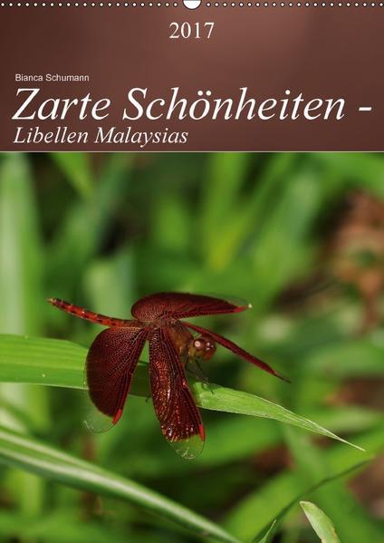 Zarte Schönheiten - Libellen MalaysiasCH-Version  (Wandkalender 2017 DIN A2 hoch) - Coverbild