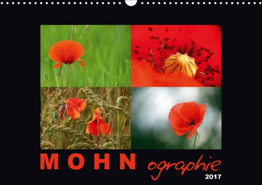 MOHNographie (Wandkalender 2017 DIN A3 quer) - Coverbild