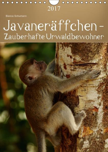Javaneräffchen - Zauberhafte UrwaldbewohnerAT-Version  (Wandkalender 2017 DIN A4 hoch) - Coverbild