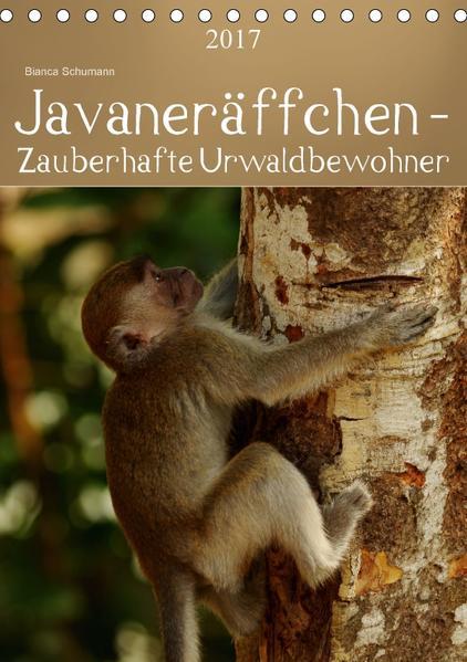 Javaneräffchen - Zauberhafte UrwaldbewohnerAT-Version  (Tischkalender 2017 DIN A5 hoch) - Coverbild