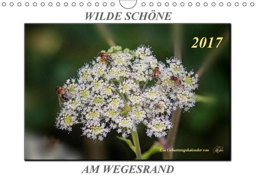 Wilde Schöne am Wegesrand (Wandkalender 2017 DIN A4 quer) - Coverbild
