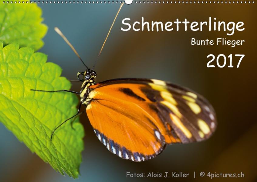 Schmetterlinge - Bunte Flieger 2017CH-Version  (Wandkalender 2017 DIN A2 quer) - Coverbild