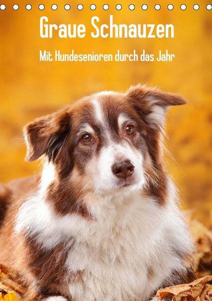 Graue Schnauzen - Mit Hundesenioren durch das Jahr (Tischkalender 2017 DIN A5 hoch) - Coverbild