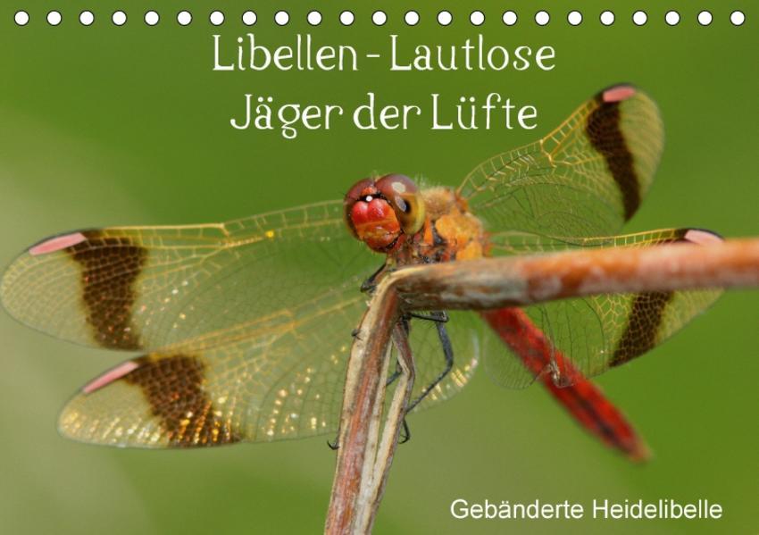Libellen - Lautlose Jäger der Lüfte (Tischkalender 2017 DIN A5 quer) - Coverbild