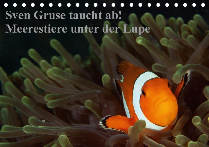 Sven Gruse taucht ab! Meerestiere unter der Lupe (Tischkalender 2017 DIN A5 quer) - Coverbild
