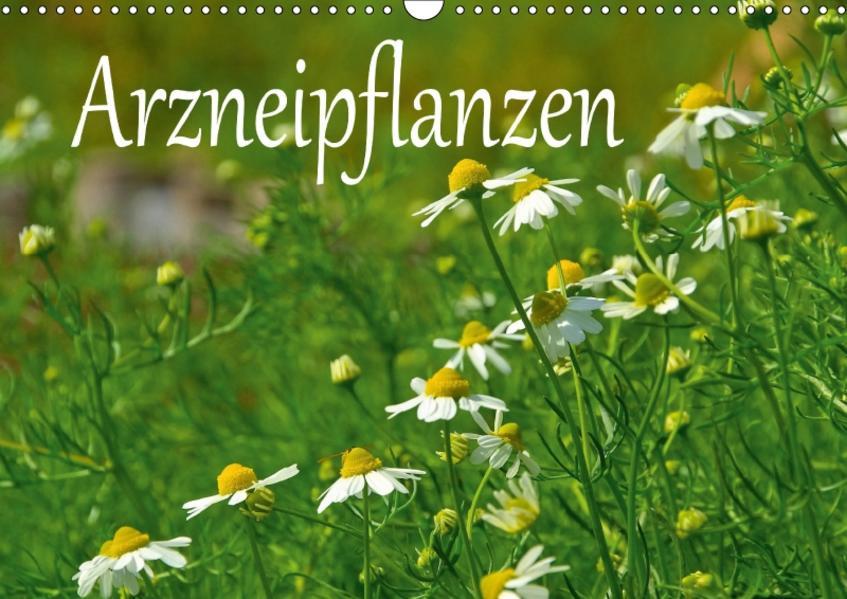 Arzneipflanzen (Wandkalender 2017 DIN A3 quer) - Coverbild