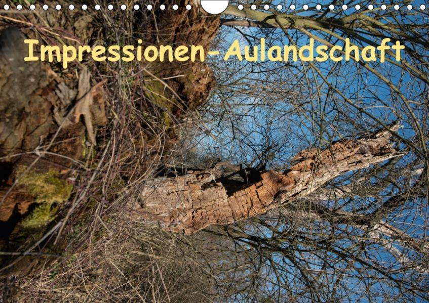 Impressionen-AulandschaftAT-Version  (Wandkalender 2017 DIN A4 quer) - Coverbild