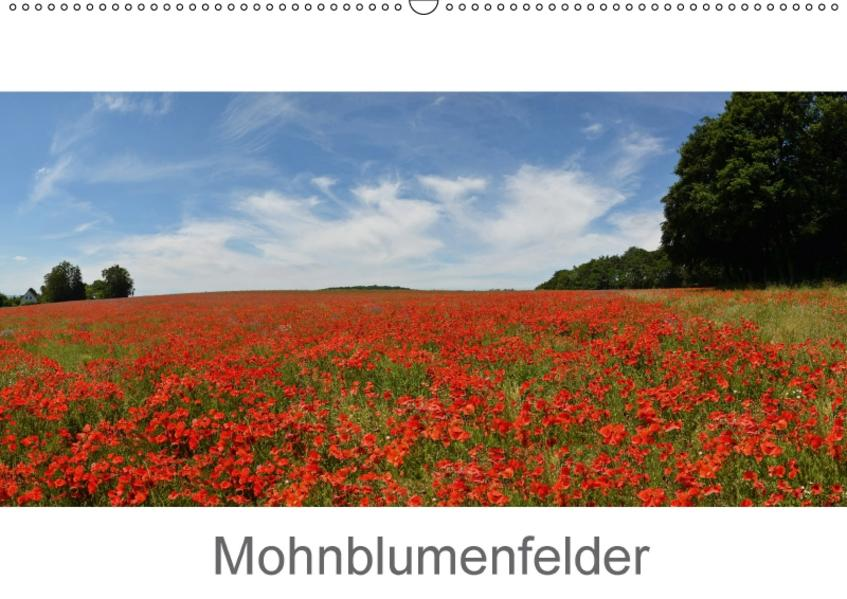 Mohnblumenfelder (Wandkalender 2017 DIN A2 quer) - Coverbild