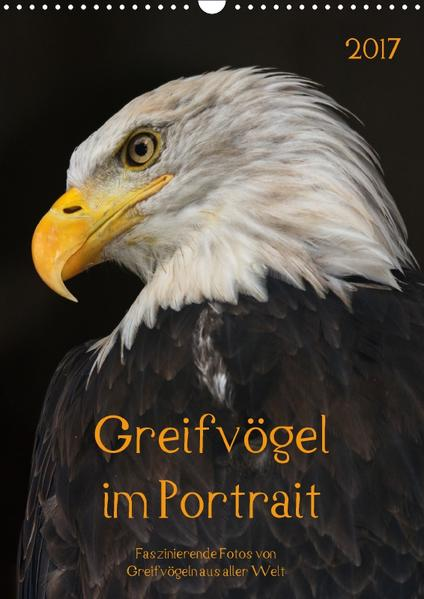 Greifvögel im PortraitAT-Version  (Wandkalender 2017 DIN A3 hoch) - Coverbild