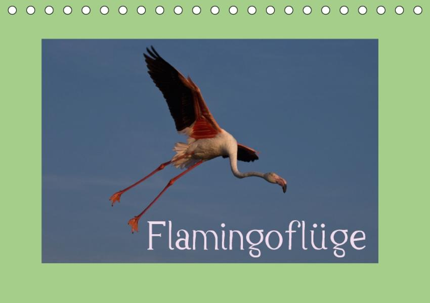 FlamingoflügeCH-Version  (Tischkalender 2017 DIN A5 quer) - Coverbild