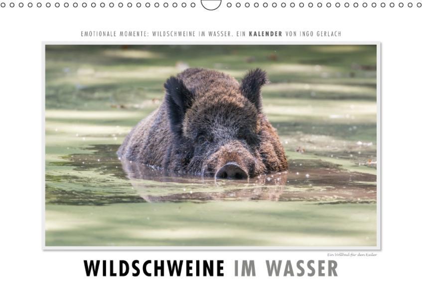 Emotionale Momente: Wildschweine im Wasser (Wandkalender 2017 DIN A3 quer) - Coverbild