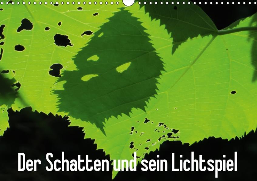 Der Schatten und sein Lichtspiel (Wandkalender 2017 DIN A3 quer) - Coverbild