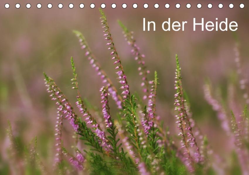 In der Heide (Tischkalender 2017 DIN A5 quer) - Coverbild