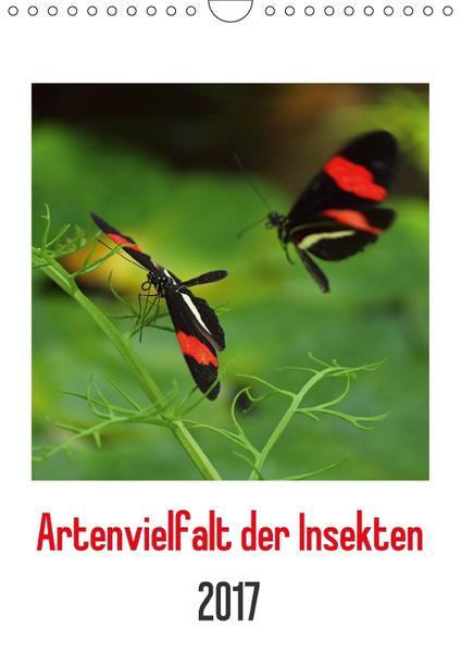 Artenvielfalt der Insekten (Wandkalender 2017 DIN A4 hoch) - Coverbild