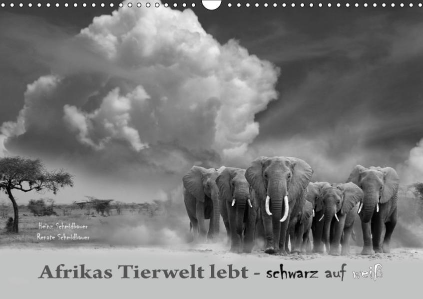 Afrikas Tierwelt lebt - schwarz auf weiß (Wandkalender 2017 DIN A3 quer) - Coverbild