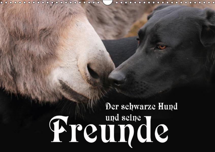 Der schwarze Hund und seine Freunde (Wandkalender 2017 DIN A3 quer) - Coverbild