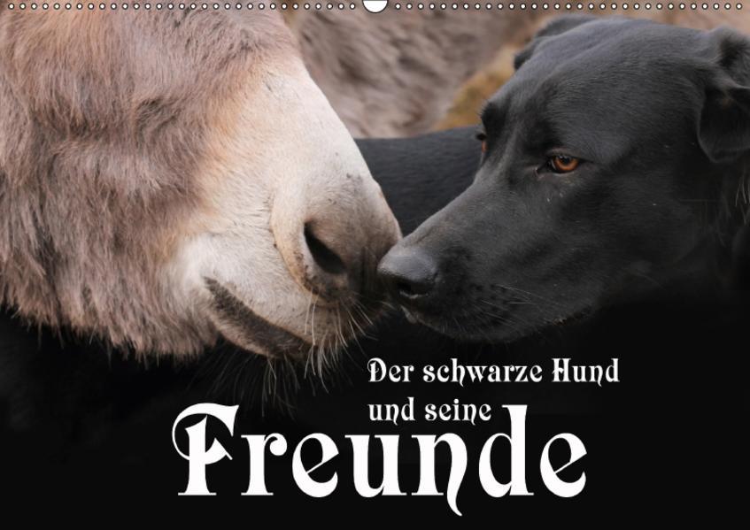 Der schwarze Hund und seine Freunde (Wandkalender 2017 DIN A2 quer) - Coverbild