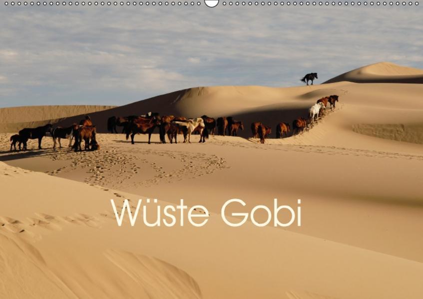 Wüste Gobi (Wandkalender 2017 DIN A2 quer) - Coverbild