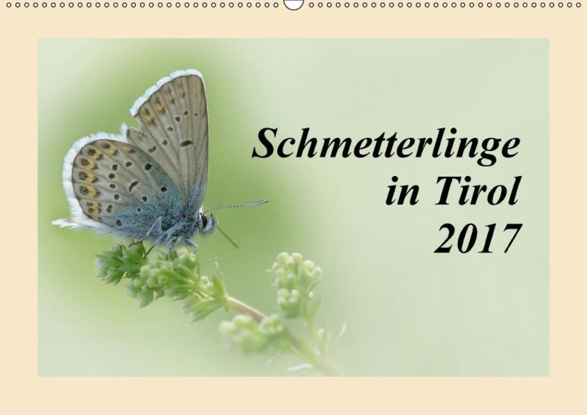 Schmetterlinge in Tirol 2017 (Wandkalender 2017 DIN A2 quer) - Coverbild
