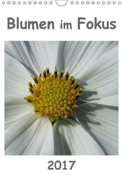 Blumen im Fokus (Wandkalender 2017 DIN A4 hoch) - Coverbild