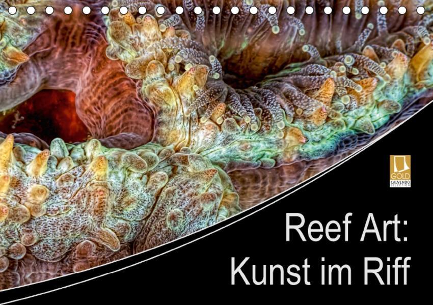 Reef Art - Kunst im Riff (Tischkalender 2017 DIN A5 quer) - Coverbild