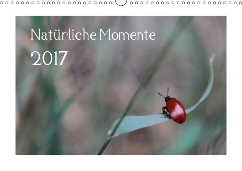 Natürliche Momente (Wandkalender 2017 DIN A3 quer) - Coverbild