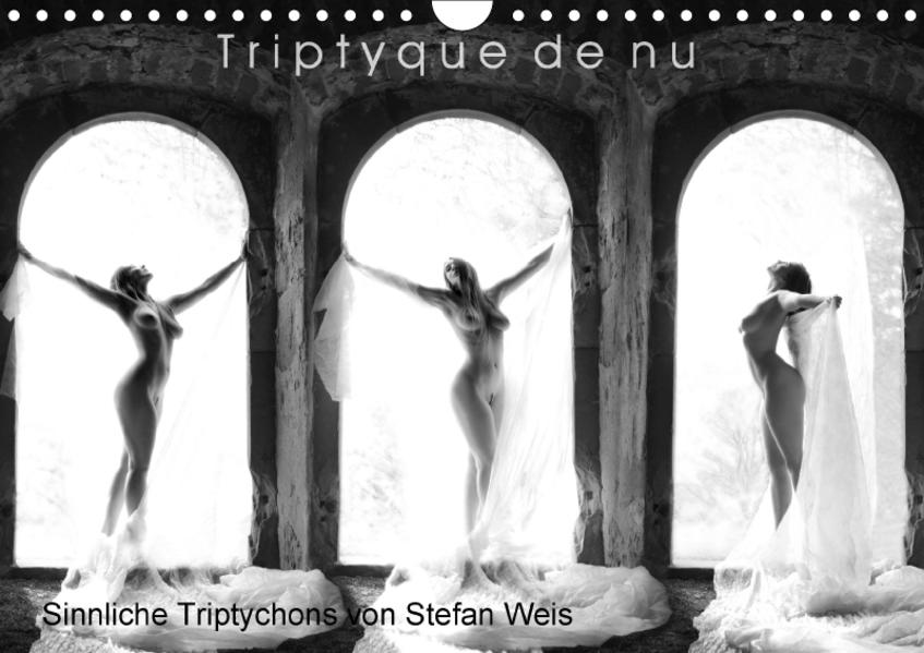 Triptyque de nu - Sinnliche Tryptichons (Wandkalender 2017 DIN A4 quer) - Coverbild