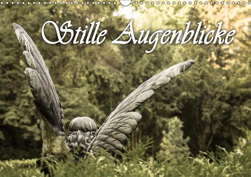 Stille Augenblicke (Wandkalender 2017 DIN A3 quer) - Coverbild