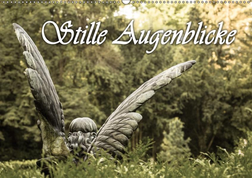 Stille Augenblicke (Wandkalender 2017 DIN A2 quer) - Coverbild