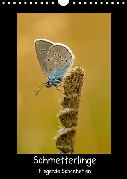 Schmetterlinge - fliegende Schönheiten (Wandkalender 2017 DIN A4 hoch) - Coverbild