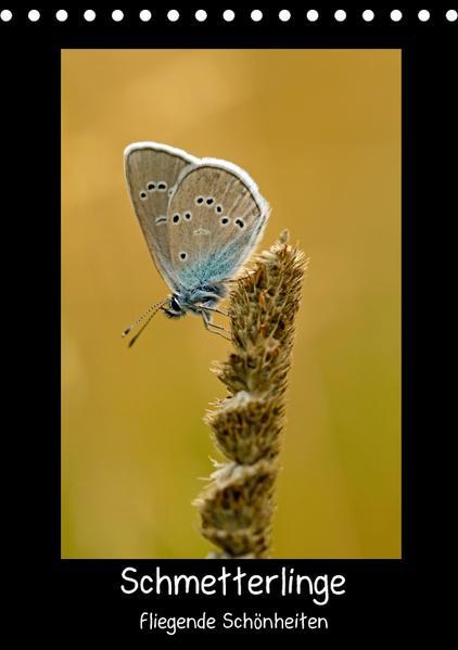 Schmetterlinge - fliegende Schönheiten (Tischkalender 2017 DIN A5 hoch) - Coverbild