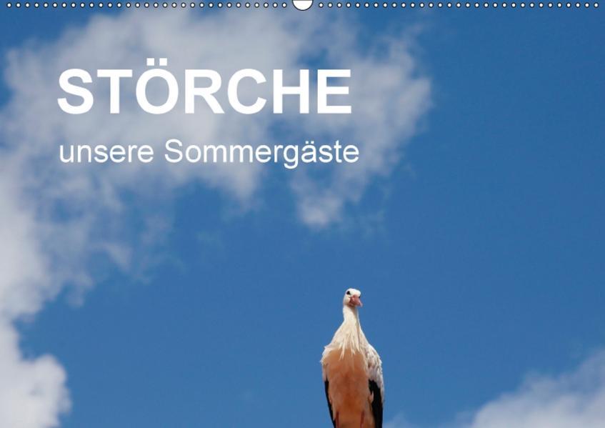 Störche - unsere Sommergäste (Wandkalender 2017 DIN A2 quer) - Coverbild